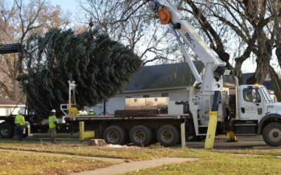 East River Crew Helps Madison Prepare for Christmas
